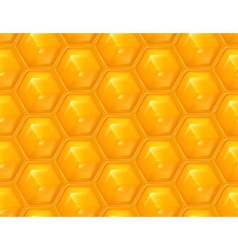 Honeycomb seamless background vector