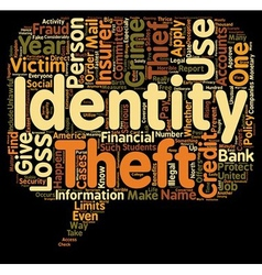 identity theft insurance text background wordcloud vector image