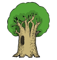 oak vector image