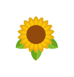 sunflower leaf icon flat style vector image