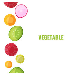 vegetable collection vegan food vector image