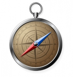 steel detailed compass vector image
