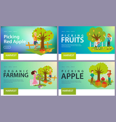 apples pears plums picking flat set vector image