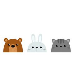 Bunny rabbit bear cat kitten kitty set cute funny vector