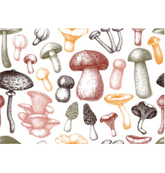 edible mushrooms background forest plants vector image