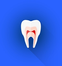 flat structure of tooth icon vector image