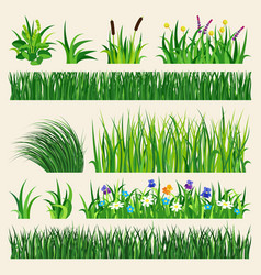 Grass nature green element vector