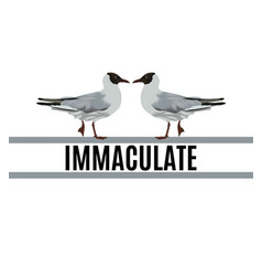 immaculate hand drawn seagull vector image