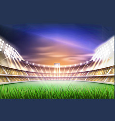 realistic footbal soccer stadium background vector image