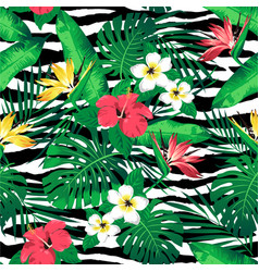 tropical flowers and leaves on zebra striped vector image