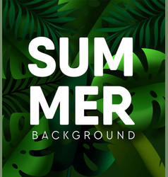 tropical palm leaf summer background vector image