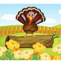 Turkey Background vector