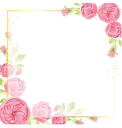 watercolor pink english rose with golden luxury vector image