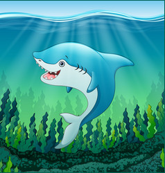 white shark cartoon underwater vector image