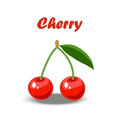 a cherry vector image