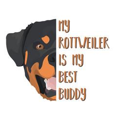 Best friend rottweiler vector