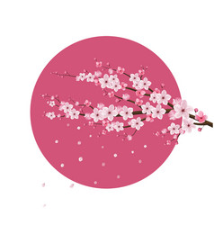 Cherry blossom realistic japan vector