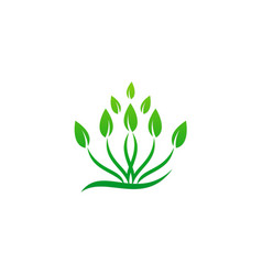 Plant green leaf grass logo vector