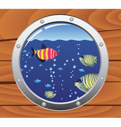 porthole and colorful fishes vector image