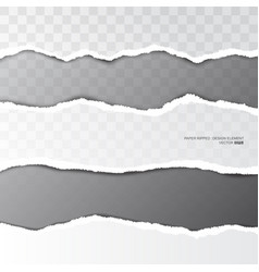 Ripped paper torn stripe on transparent background vector