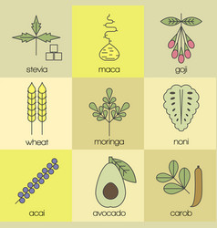 superfood color line icons set color background vector image