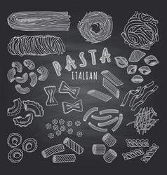 Types of itallian pasta hand drawn pictures on vector