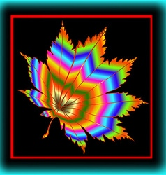 Maple Leaf in the frame vector image vector image
