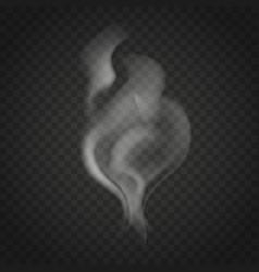 transparent smoke isolated on dark background vector image