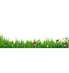 flowers border vector image vector image