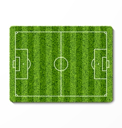 Green grass soccer field vector image
