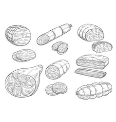 Sketch iocon of meat and sausage products vector
