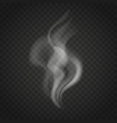 transparent smoke isolated on dark background vector image