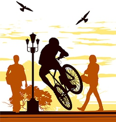 bicycle silhouettes vector image vector image