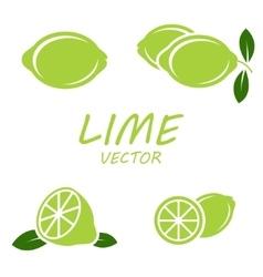 flat lime icons set vector image vector image