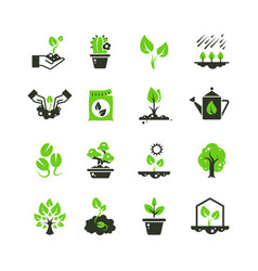 tree sprout and plants icons seedling and vector image vector image
