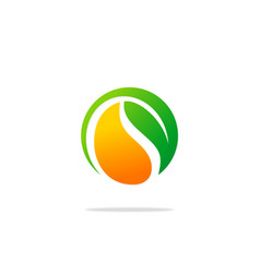 bio organic green leaf logo vector image