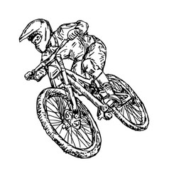 cycling mountain bike vector image