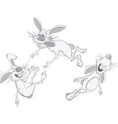 Rabbits cartoon vector image
