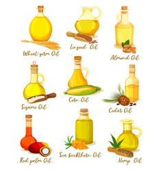Set isolated bottles or jars with different oil vector