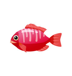 Tropical exotic coral fish bright colorful vector