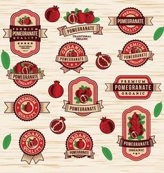 Vintage pomegranate labels sticker vector