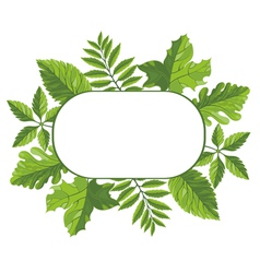 Frame with green leaves vector image vector image