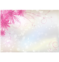 Pink aster background vector image