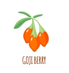 Goji berry icon in flat style on white background vector image vector image