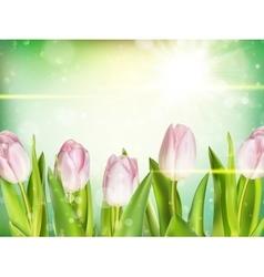Bunch of fresh pink tulips EPS 10 vector