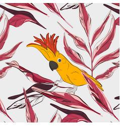 cockatoo yellow red parrot pattern wildlife bird vector image
