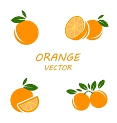 Flat orange icons set vector