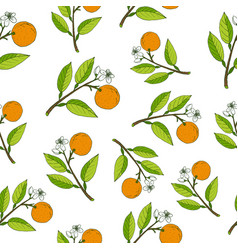 Fresh citrus seamless pattern vector