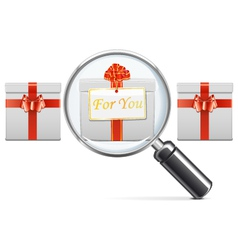 Gift with Lens vector image