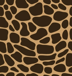 leather of giraffe 2 vector image